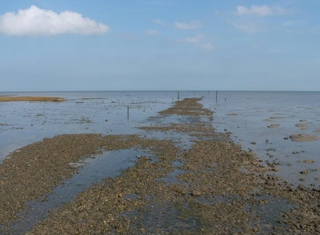 Take An Ancient Step On The Broomway