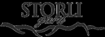 291px_storligard_logo.png
