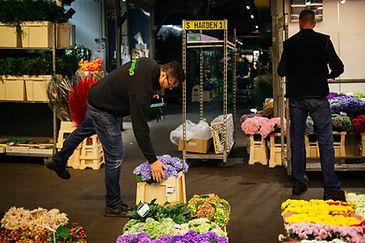Grossmarkt_KathrinStahlPhotographer-76.j