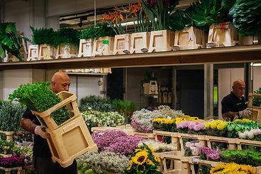 Grossmarkt_KathrinStahlPhotographer-16.j