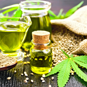 The Next Big Thing In Health Benefits Of Hemp Seed Oil