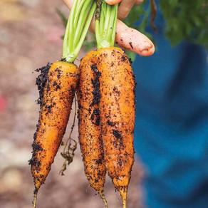 Organic Awareness Month