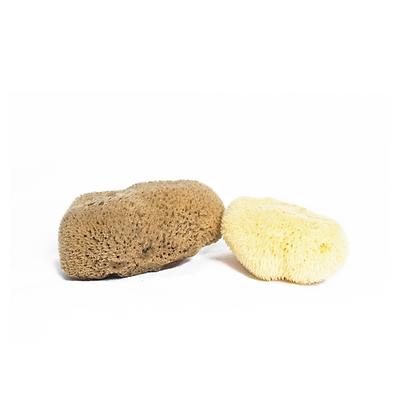 Meeka - Fine Silk Mini Sea Sponge