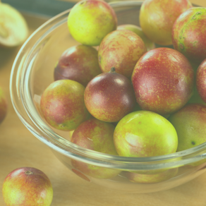 What Is Camu Camu and How Can It Help You? Discover It's Benefits