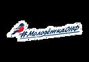 лого МОНФ.png