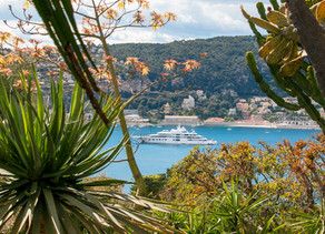 Location, Location, Location – The Allure of Provence and the French Riviera