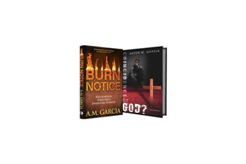 Burn Notice & Coincidence or God? Bundle