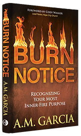 Burn Notice Hardback New.png