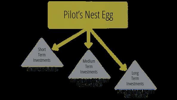 Pilot-Nest-Egg-compressor (1).png