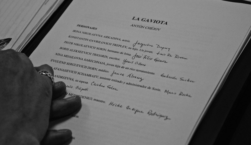 La gaviota lectura (11).jpg