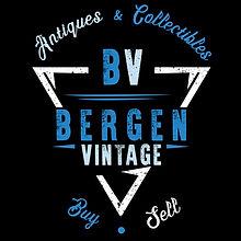 BV logo1 blue color.jpg