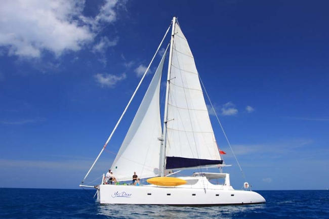Catamaran Yes Dear