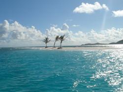 3 Palm Island