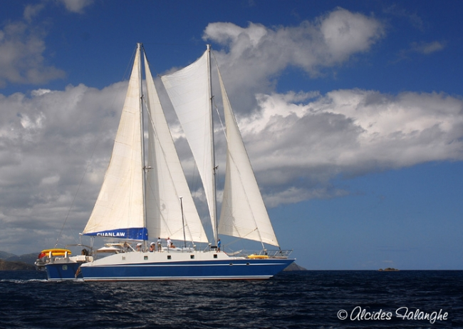 Trimaran Cuan Law
