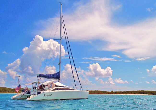 Catamaran Freebird Online Brochure