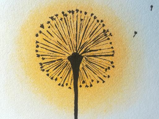 Pourquoi le Pissenlit fleurit au printemps?