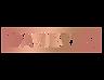 Daniette logo.png