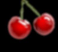 cherries-31484_1280.png