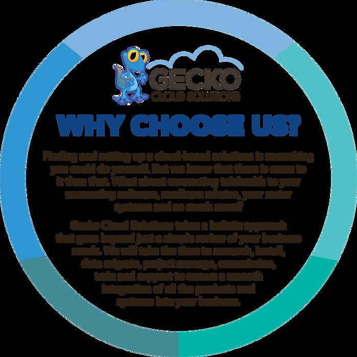 GECKO_CS-WhyChooseUs.png