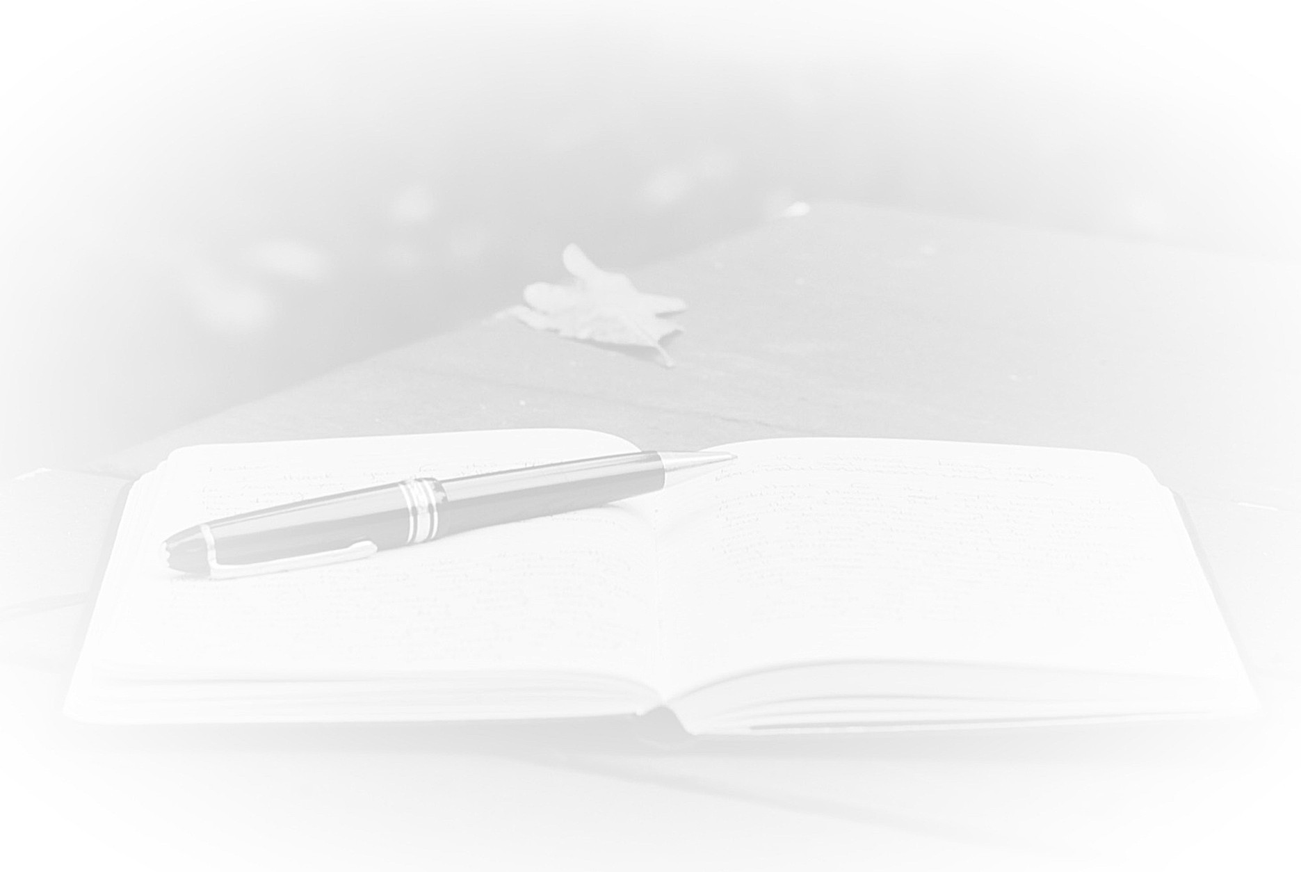 Notebook%20and%20Pen_edited.jpg