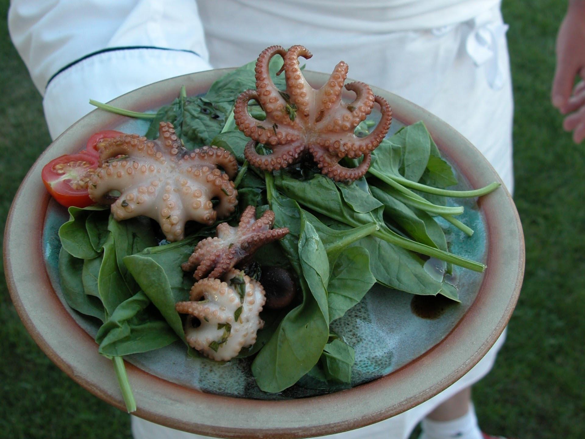 Balsamic-flavoured Octopus