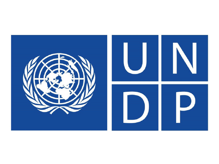 15_UNDP.png