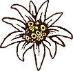 Logo Boutique Farmstyle Edelweiss transp