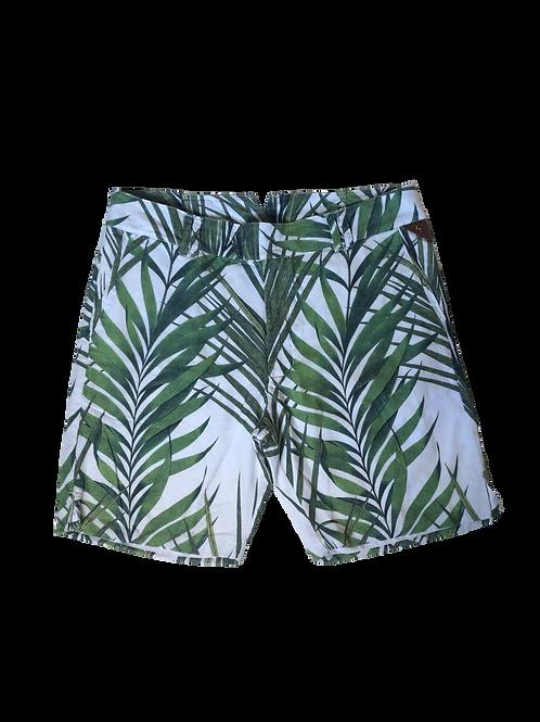 Bermuda Plantas