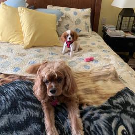 Bailey & Savannah