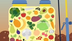 Quali sono frutta e verdura da bollino rosso