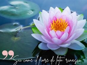 Raggiungere il benessere è semplicemente il frutto di un impegno, quello verso sé stessi