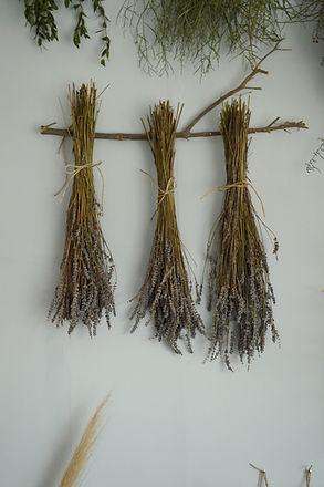 ramos de lavandas secas