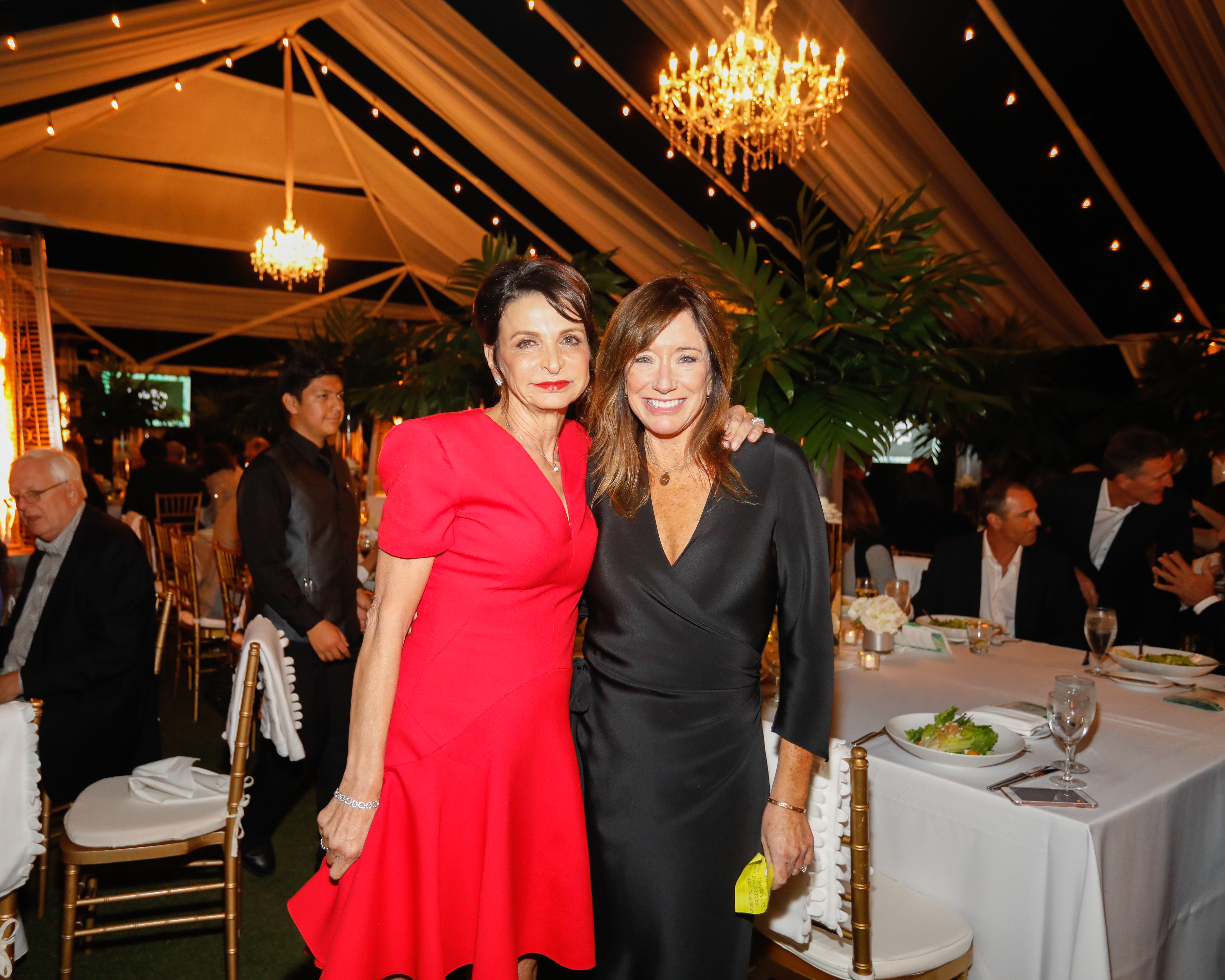 NGingold_FriendshipGala17_163
