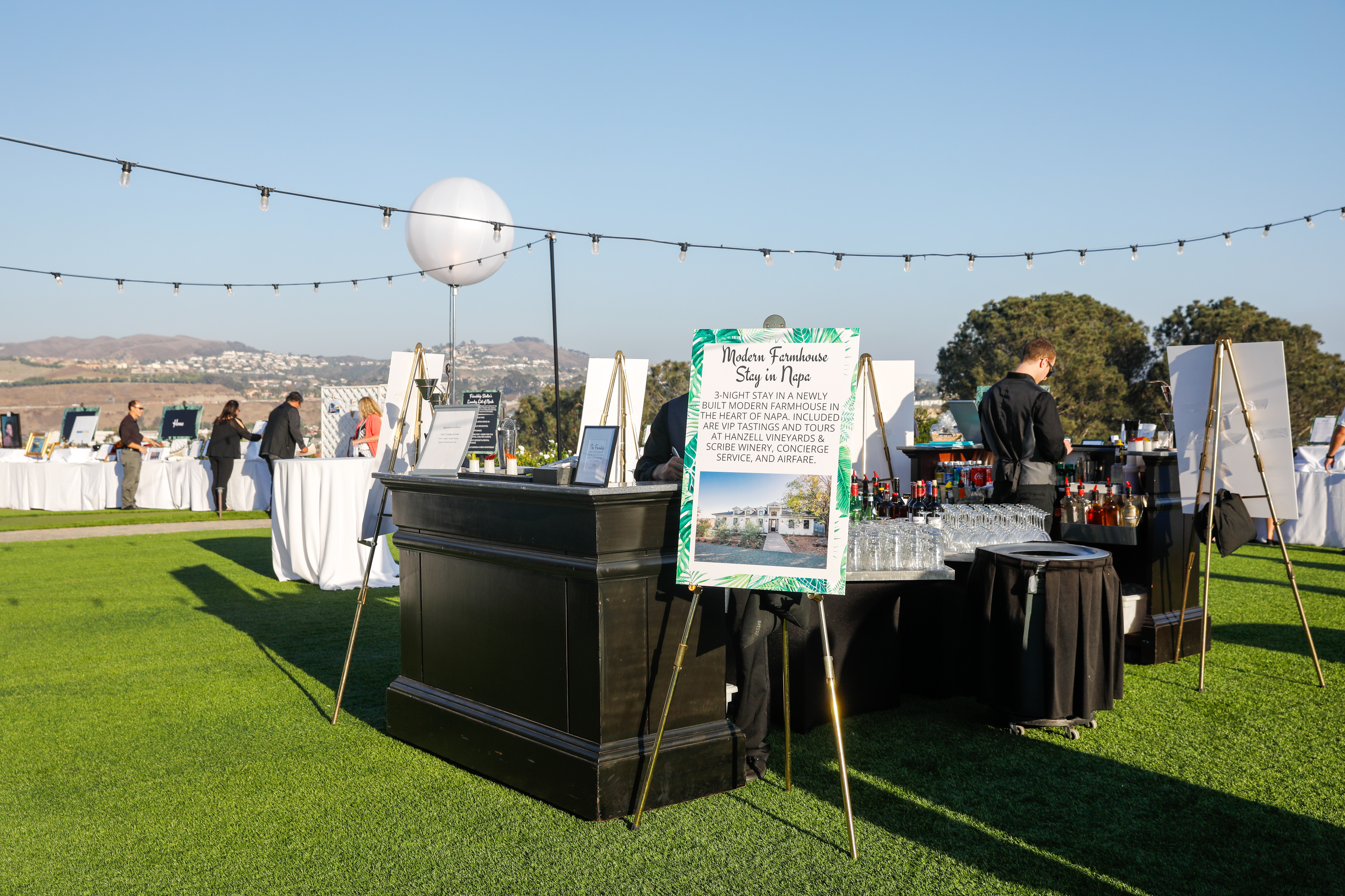 NGingold_FriendshipGala17_001