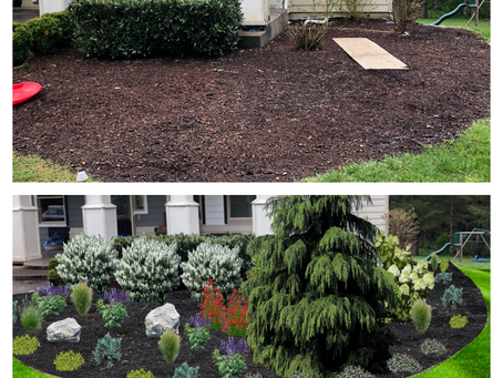 Have you asked yourself recently, where do I begin with a landscape design?