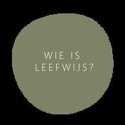 WIE IS LEEFWIJS_Tekengebied 1.png