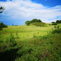 Course nature trail simorre midi pyrénée gers