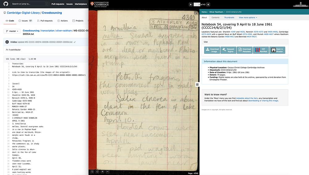 Image from the website for Oliver Rackham's notebooks