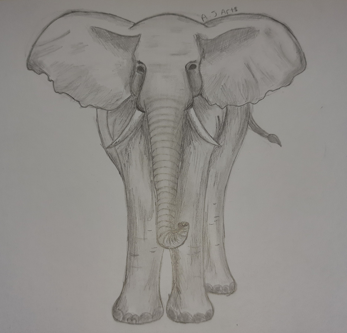 Abigail DofE Online Art course.jpg