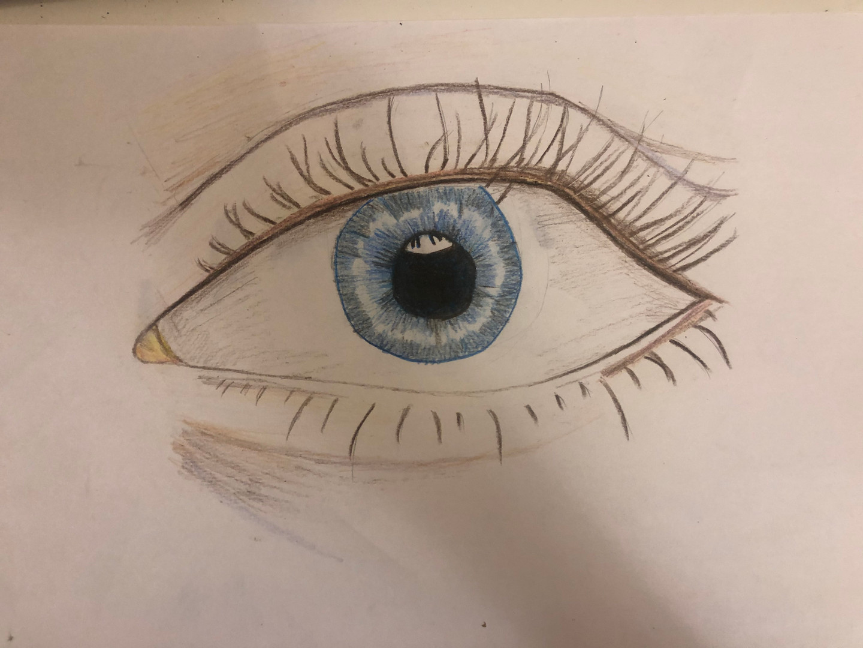 Haniya DofE Online Art Course