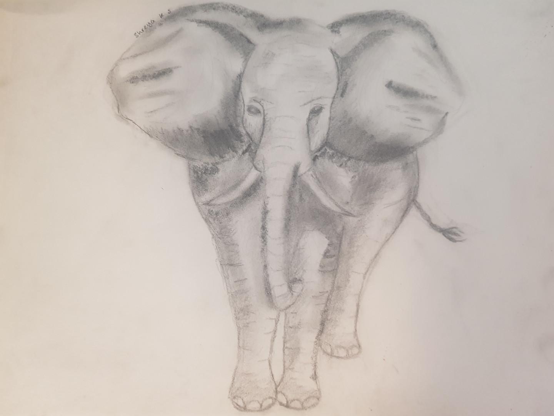 Shreya DofE online Art course.jpg