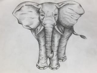 Arya DofE online art course.jpg