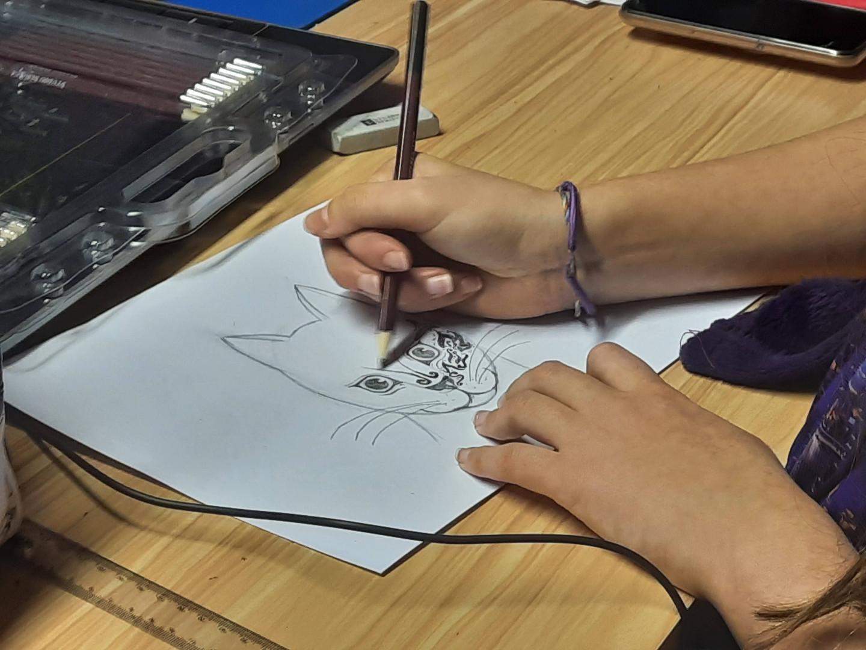 Abigail DofE Online Art Course