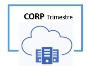 COLABO ERP Corporate | Trimestre