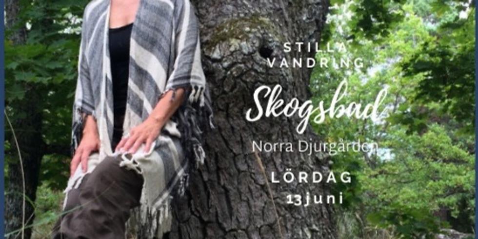 Skogsbad på Norra Djurgården