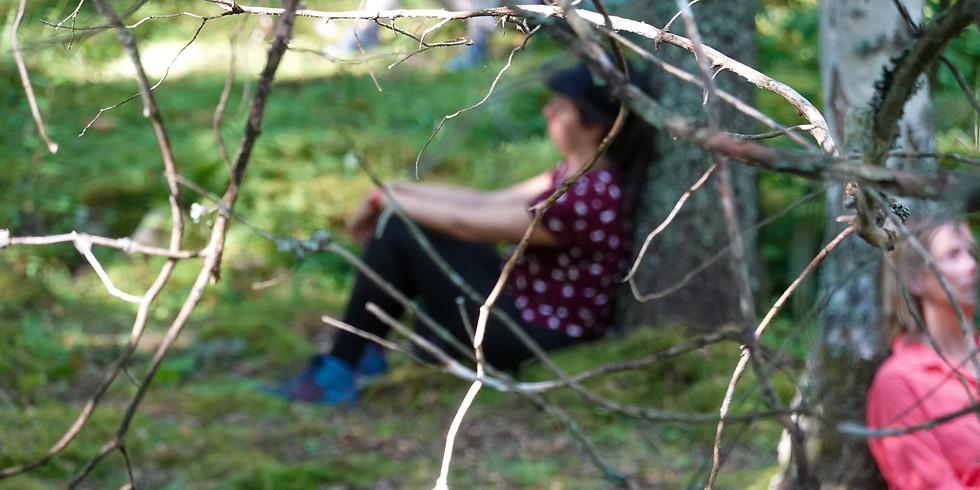 Skogsbad för dig med hjärntrötthet, utmattning  eller mycket stress.