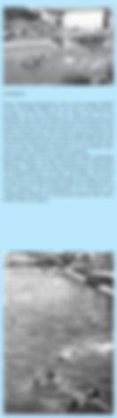 Max Frisch 7 - 2 of 3.jpg