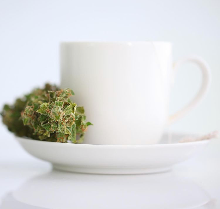 NYS Cannabinoid/Hemp Retail License