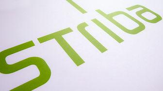 design_thema_striba_CD_logo_09_RAW_M.jpg