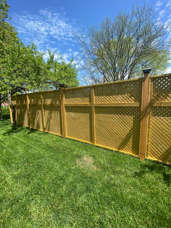 Our own fence!